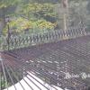 Ref. 03 – Orangerie in smeedwerk foto 2