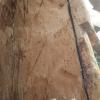 Ref. 37 – Antiek houten beeld foto 3