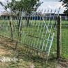Ref. 31 – Smeedijzeren landelijke boerderijpoort foto 2